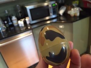 camo.egg